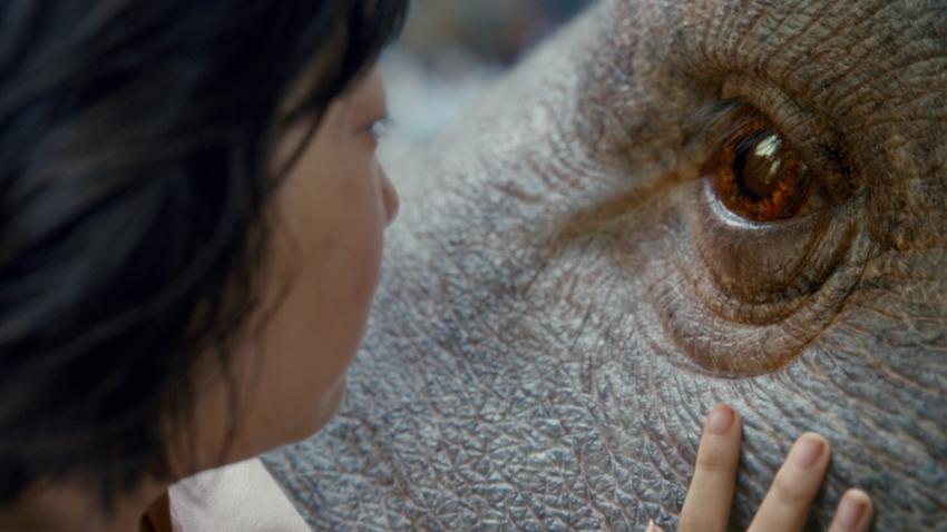 okja : การผจญภัยจากโซลสู่นิวยอร์กเพื่อช่วยชีวิตหมูยักษ์!