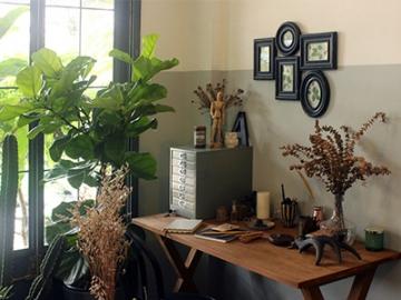 ลดความเครียด เพิ่มความคิดสร้างสรรค์ ด้วยการทำความรู้จักต้นไม้ที่เหมาะจะปลูกใกล้โต๊ะทำงาน