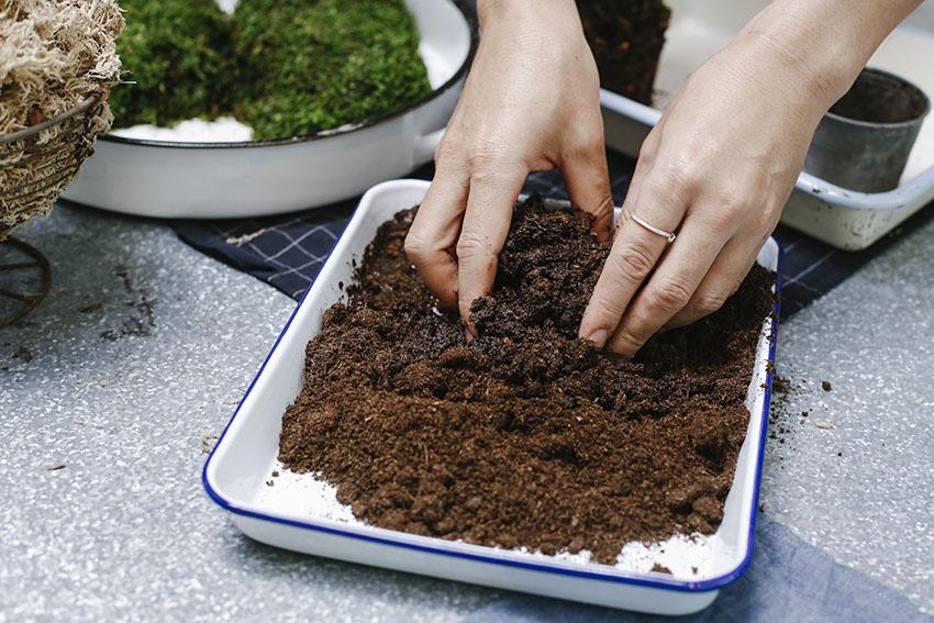 Kokedama : หัดทำบอนไซก้อนกลมสุดน่ารักที่ช่วยให้บ้านเย็น อารมณ์เย็น แม้ไม่ใช่เวลาเย็น