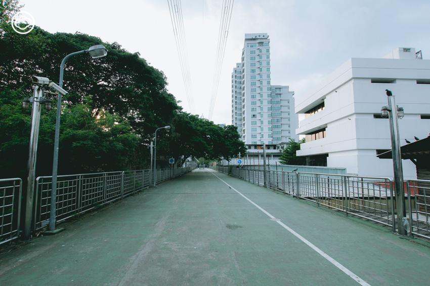 สะพานเชื่อมสวน