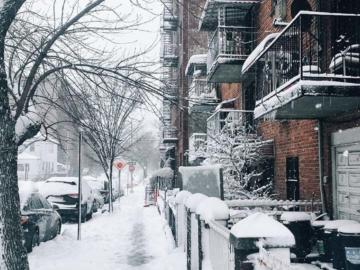 ที่ที่อุ่นที่สุดของหนุ่มโสดในฤดูหนาวกลางนิวยอร์ก
