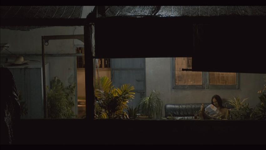 ฝนตกขึ้นฟ้า