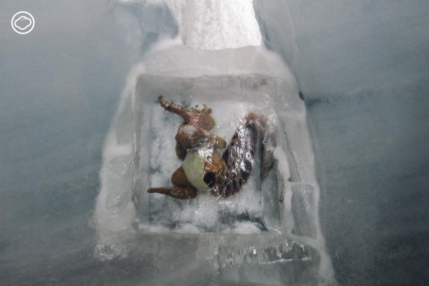 น้ำแข็ง