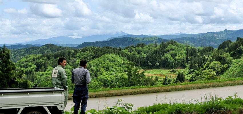 Echigo Farm