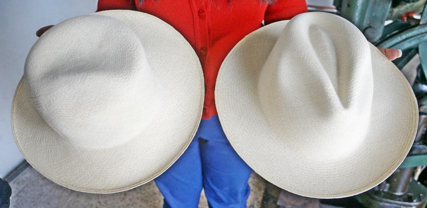 หมวกปานามา
