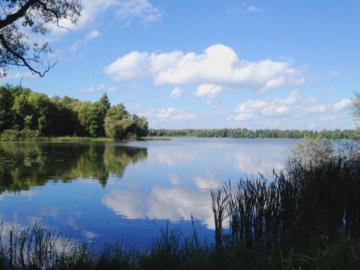 ไปสูดอากาศดีๆ ให้เต็มปอดที่ Växjö เมืองที่เขาว่ากันว่าเขียวที่สุดในยุโรป