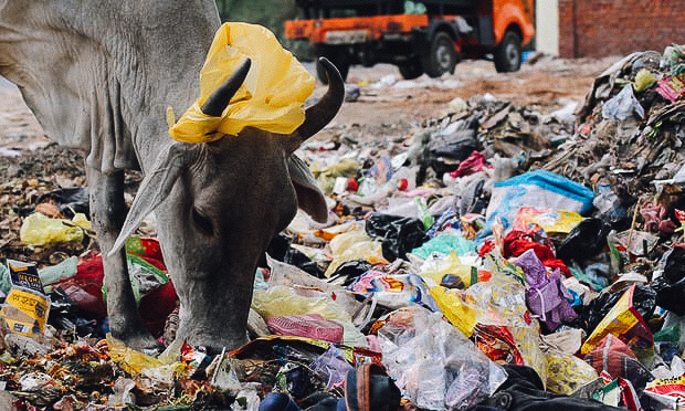 งดใช้ถุงพลาสติก, พลาสติก, อินเดีย, ขยะพลาสติก