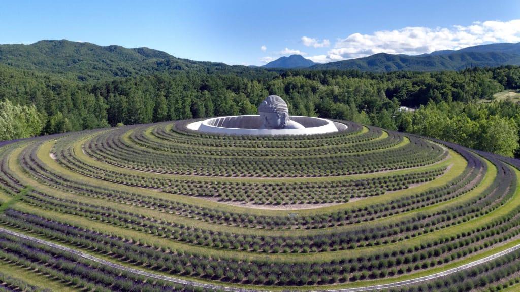 ลาเวนเดอร์, วัด, พระพุทธรูป, ญี่ปุ่น, สุสาน Makomanai Takino Cemetery, ซัปโปโร, ฮอกไกโด
