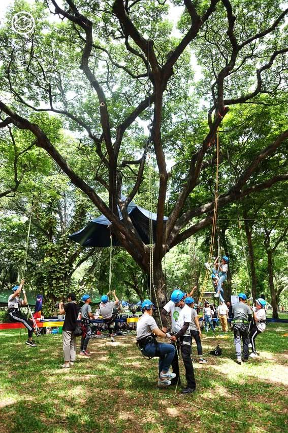 TCP Spirit, หมอต้นไม้, สวนลุมพินี
