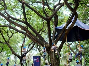 ตามคนเมืองออกไปสนุกกับการดูแลต้นไม้ใหญ่ที่ใจกลางสวนลุมฯ