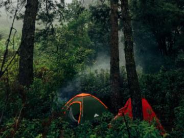 เมื่อหนุ่มปกาเกอะญอ สามเณรอเมริกัน เดินเข้าป่าไปฟังเสียงที่ใช้หูฟังไม่ได้