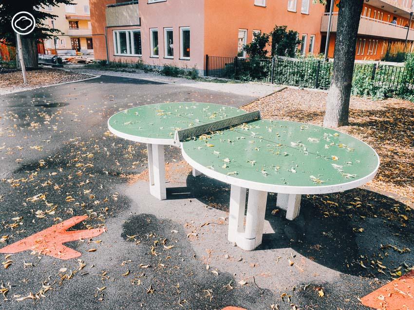 สวนสาธารณะ, สนามเด็กเล่น, ดอกไม้, สวีเดน, สตอกโฮล์ม