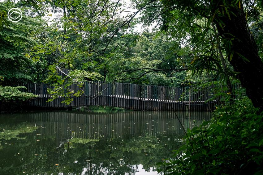 The Bird Wave Bridge, สวนจตุจักร, สวนรถไฟ