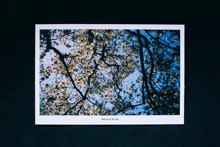 โปสการ์ด, postcard,Teaspoon Studio