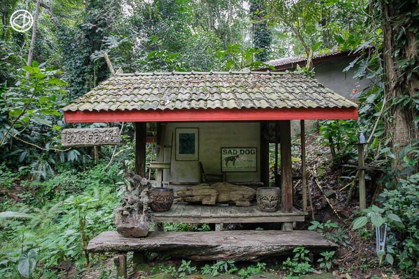 สวนทูนอิน