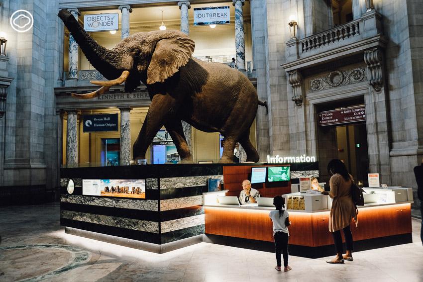 พิพิธภัณฑ์สมิธโซเนียน, Smithsonian