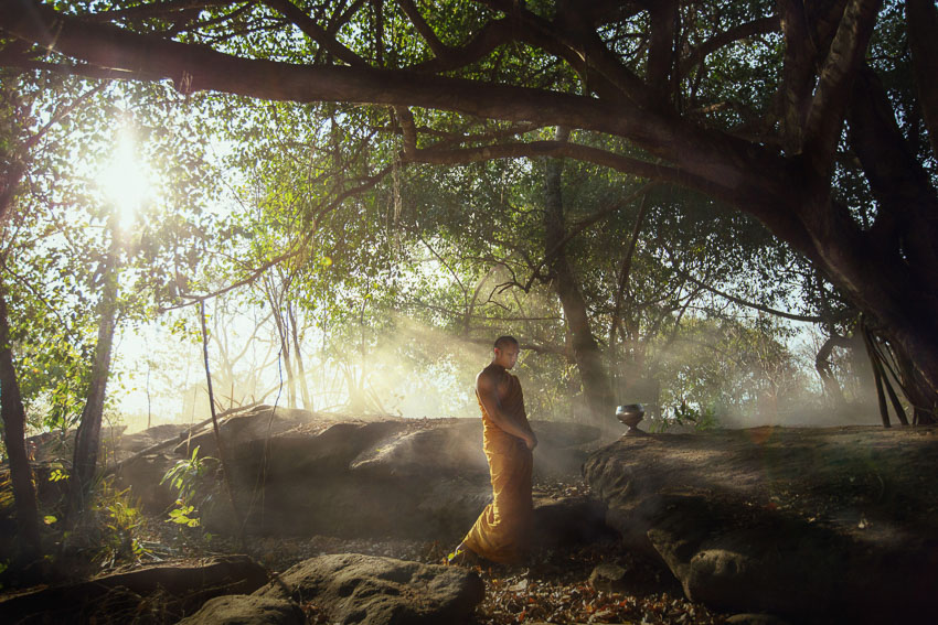 Dhamma on Lens