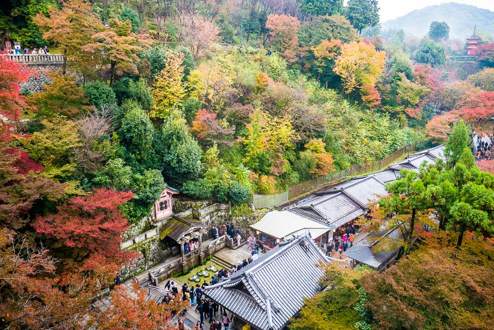 ใบไม้เปลี่ยนสี, ญี่ปุ่น