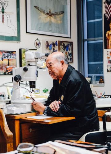 วิชัย มะลิกุล นักวาดภาพวิทยาศาสตร์ชาวไทยผู้ทำงานใน Smithsonian มากว่า 50 ปี