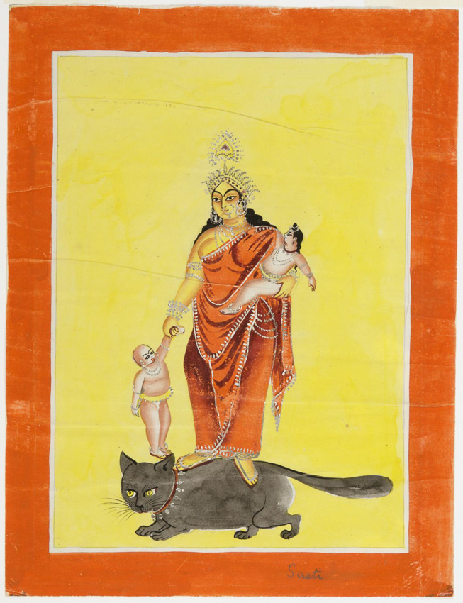 พระราชพิธีบรมราชาภิเษก, แมว