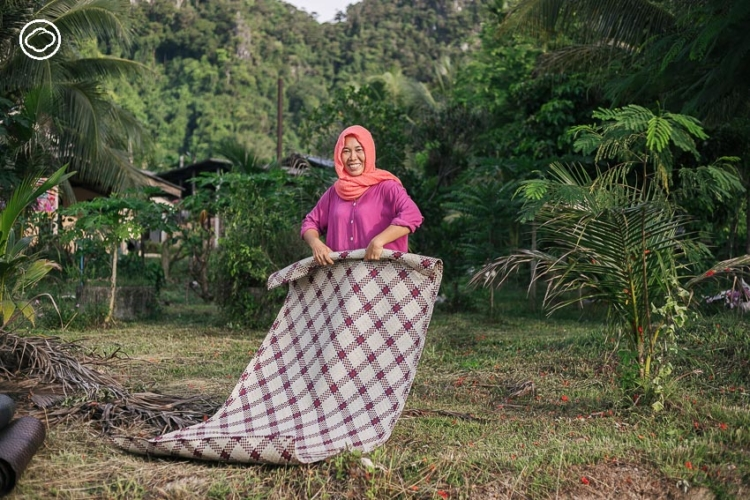 ดุหุนสามัคคี : แม่บ้านมุสลิม 40 คนจากตรังที่สร้างรายได้จากพืชมีหนามราคา 0 บาท
