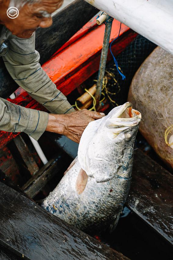 Fisherfolk