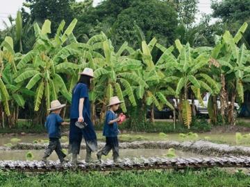 Ginger Farm ฟาร์มออร์แกนิกครบวงจรที่ปลูกปรุงผักล้านนาเพื่อส่งต่อภูมิปัญญาฟาร์มสู่เมือง