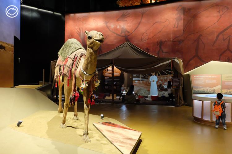 ออกสำรวจ 7 ภูมิประเทศ ภูมิอากาศ รอบโลกได้ในวันเดียวที่พิพิธภัณฑ์พระรามเก้า
