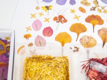 วิชา DIY เก็บรักษาดอกไม้จากคนสำคัญที่เต็มไปด้วยความทรงจำให้สวยสดใสไปอีกหลายสิบปี