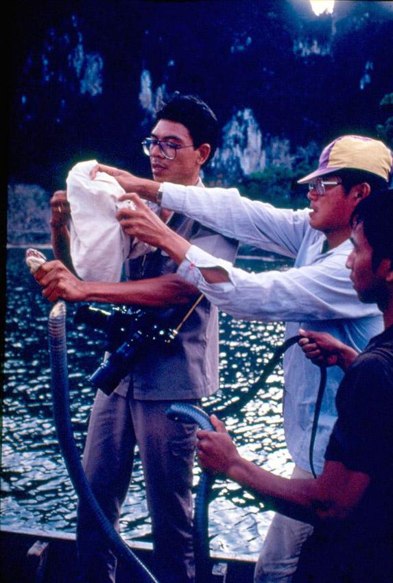 1 กันยายน วันสืบ นาคะเสถียร วีรบุรุษผู้อุทิศตนให้กับธรรมชาติที่ได้รับการยกย่องจากคนทั่วโลก