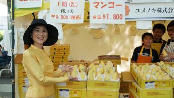 เที่ยวงาน Thai Fest เทศกาลไทยที่ใหญ่สุดในโลกในสวนกลางโตเกียว