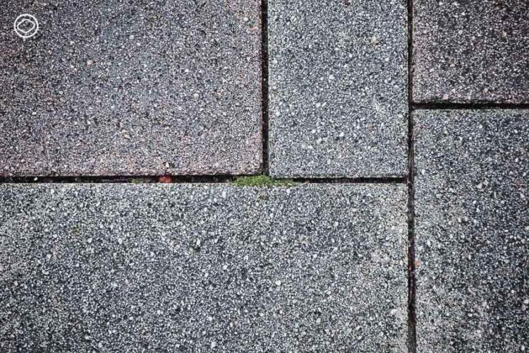 การออกแบบพื้นที่สีเขียว ใจกลางย่านธุรกิจของ ญี่ปุ่น ที่ทำให้นกและผีเสื้อบินไปมาระหว่างสวนได้