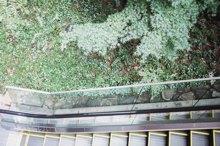 การออกแบบพื้นที่สีเขียว ใจกลางย่านธุรกิจของญี่ปุ่นที่ทำให้นกและผีเสื้อบินไปมาระหว่างสวนได้