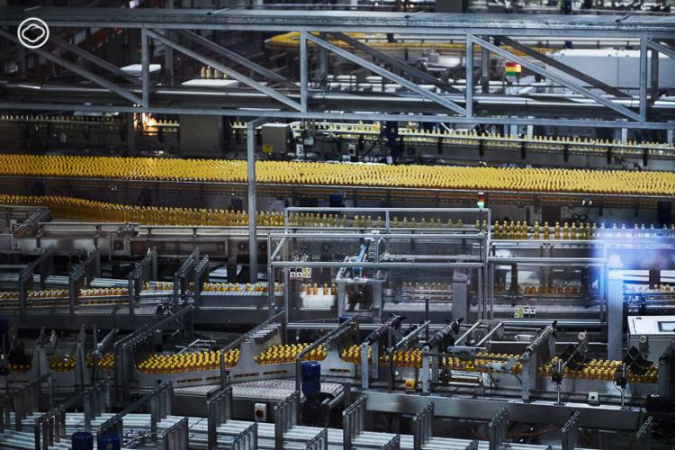 Ichitan x Qualy คอลเลกชันของใช้ในบ้านที่ผลิตจากขวดพลาสติกชนิด PET จากโรงงานอิชิตัน