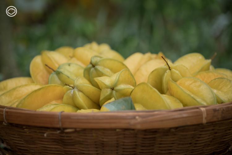 Charna ร้านอาหารเพื่อสุขภาพที่เสาะหาวัตถุดิบดีที่สุดจากเพื่อนเกษตรกรมาปรุงเป็นเมนูรสอร่อย