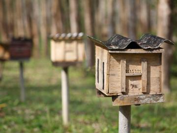 ชุมชนมุสลิมเก่าแก่ ไหนหนัง ที่แข็งแกร่งได้ขณะราคายางตกด้วยการเลี้ยงผึ้งในป่าชายเลนและรักษ์ทะเล