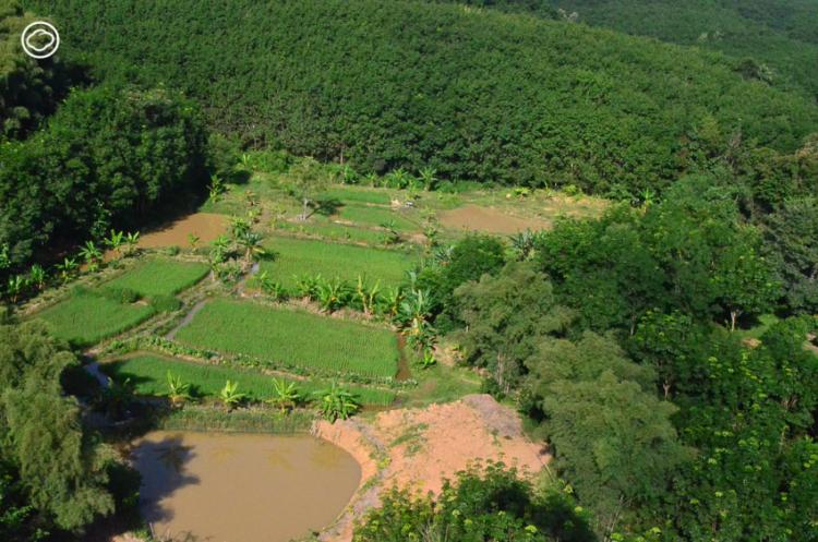 กุล ปัญญาวงศ์ ผู้เริ่มทำแท็งก์น้ำไม้ไผ่ นวัตกรรมภูมิปัญญาที่ให้ผลเป็นการซ่อมแซมผืนป่าน่าน