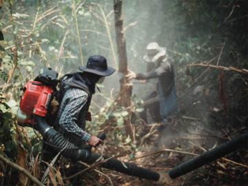 จากทริปเข้าป่าศึกษาเรื่องน้ำผึ้งของเชฟ กลับกลายเป็นทริปเฉพาะกิจเพื่อช่วยดับไฟป่าบนดอย