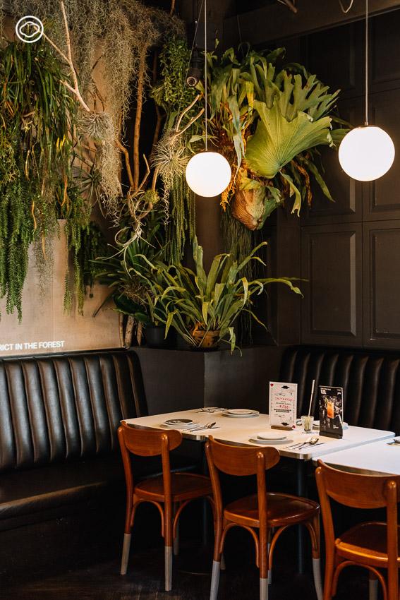 วิธีออกแบบป่าและอาหารในบรรยากาศดินแดนเหนือจริงของ Greyhound Cafe