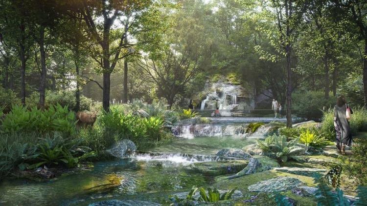 The Forestias ผืนป่าใจกลางกรุงเทพฯ กับระบบนิเวศสมบูรณ์ที่รวมพืชพื้นถิ่นหลายพันต้นไว้มากกว่า 300 สปีชีส์