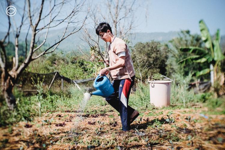 โนบิตะ หนุ่มญี่ปุ่นวัย 20 กับการค้นพบสิ่งสำคัญของชีวิตจากไข่เจียวจานแรกใน หมู่บ้าน ปกาเกอะญอ