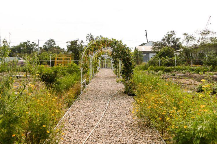 มิโนะบุรี Minoburi พื้นที่ทางเลือกสร้างจากวัสดุรีไซเคิล ที่เป็นทุกอย่างตั้งแต่สวนไปจนถึงพื้นที่สร้างสรรค์ของชาวมีนบุรี