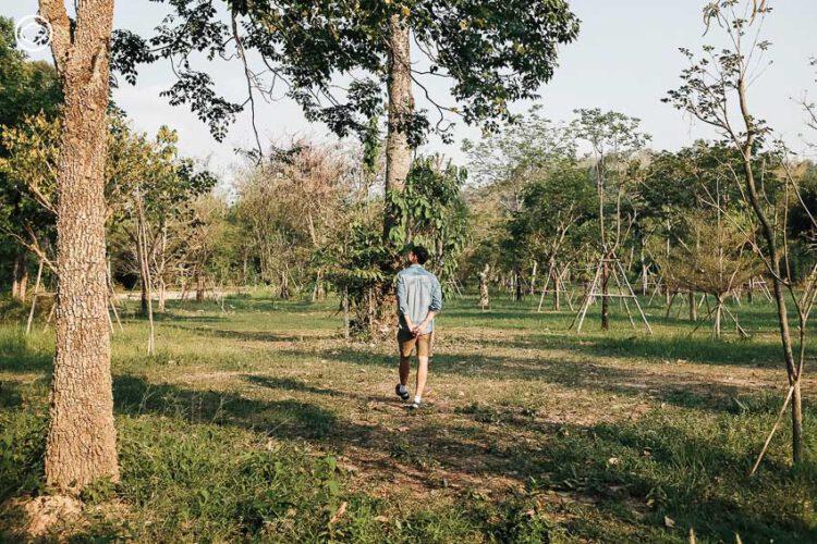 เวียร์ ศุกลวัฒน์ คณารศ เปิดบ้านกลางสวนป่าที่นครนายก วันที่เขาบ้าปลูกต้นไม้