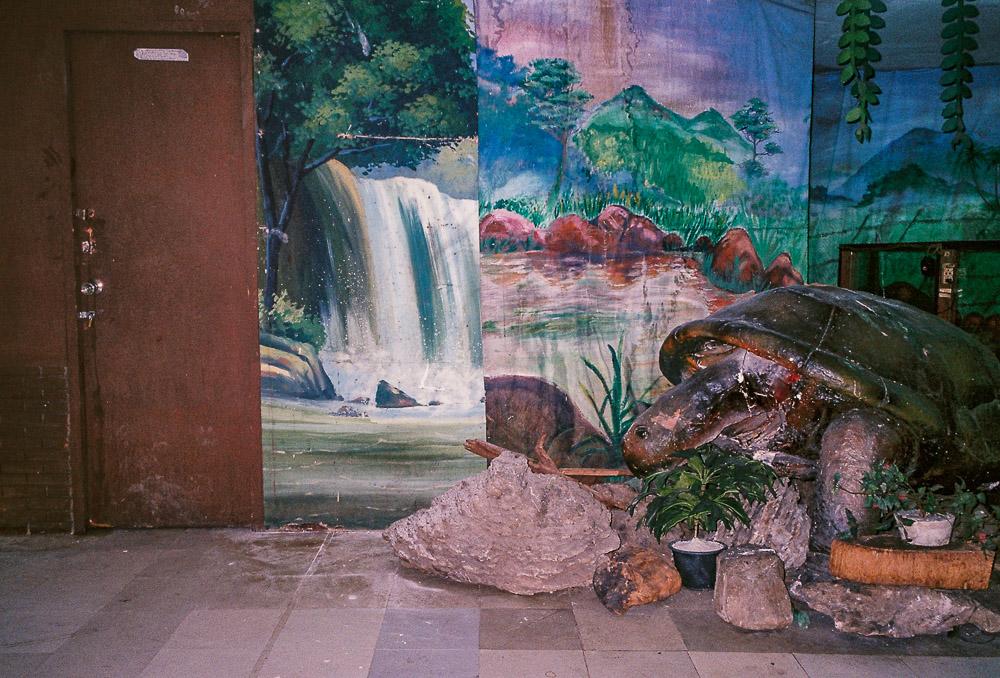 Broken Dreams ชุดภาพถ่ายปัจจุบันของสวนสัตว์ในห้างที่เคยเป็นความมหัศจรรย์ของคนในอดีต