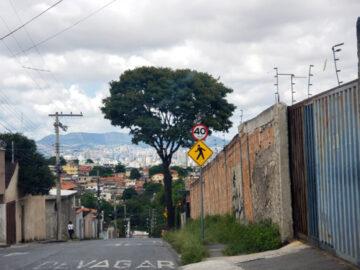 เรื่องเล่าจากชาวอเมริกันที่ติดค้างใน 3 มุมโลก แอฟริกาใต้ บราซิล และเมืองไทย,covid-19