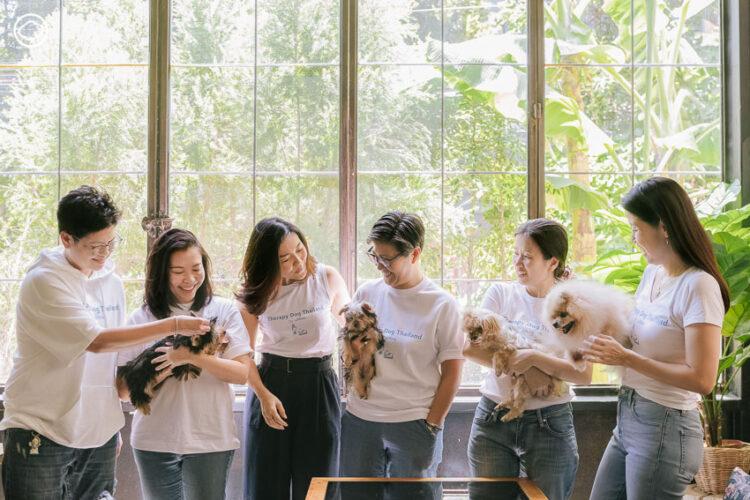 Therapy Dog Thailand หลักสูตรสุนัขบำบัดที่ฝึกทั้งคนและหมาให้เยียวยากันและกัน
