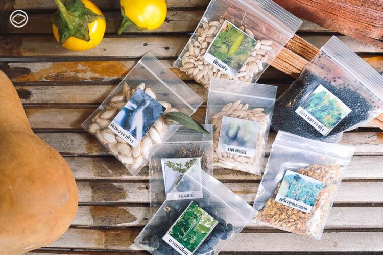ราเมศวร์ เลขยันต์ ผู้ขับเคลื่อนความมั่นคงทางอาหารและทำตลาดอินทรีย์ที่ฮิปสุดในอุทัยธานี, ตลาดซาวไฮ่