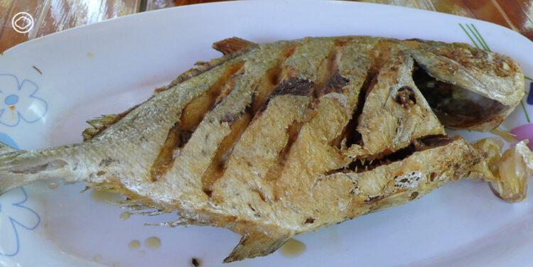 เมนูอะไรเหมาะสมกับปลาแต่ละชนิด กับ 3 สิ่งที่คนชอบกินปลาต้องเตรียมให้พร้อม, อาหารไทย, กินปลามีประโยชน์