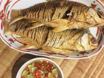 เมนูอะไรเหมาะสมกับปลาแต่ละชนิด กับ 3 สิ่งที่คนชอบกินปลาต้องเตรียมให้พร้อม, อาหารไทย, กระพงทอดน้ำปลา