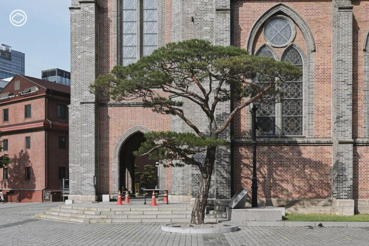 สำรวจอีกบรรยากาศของโซล ตามรอยตึกเก่าแบบเรเนซองส์แล้วบันทึกไว้ด้วยการสเกตช์, ที่เที่ยวโซล เกาหลีใต้